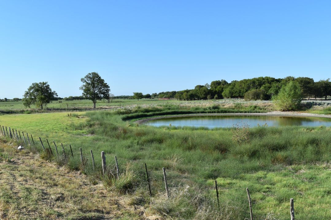 Land kaufen in TBD County Line Rd, Mart, Texas ,76664