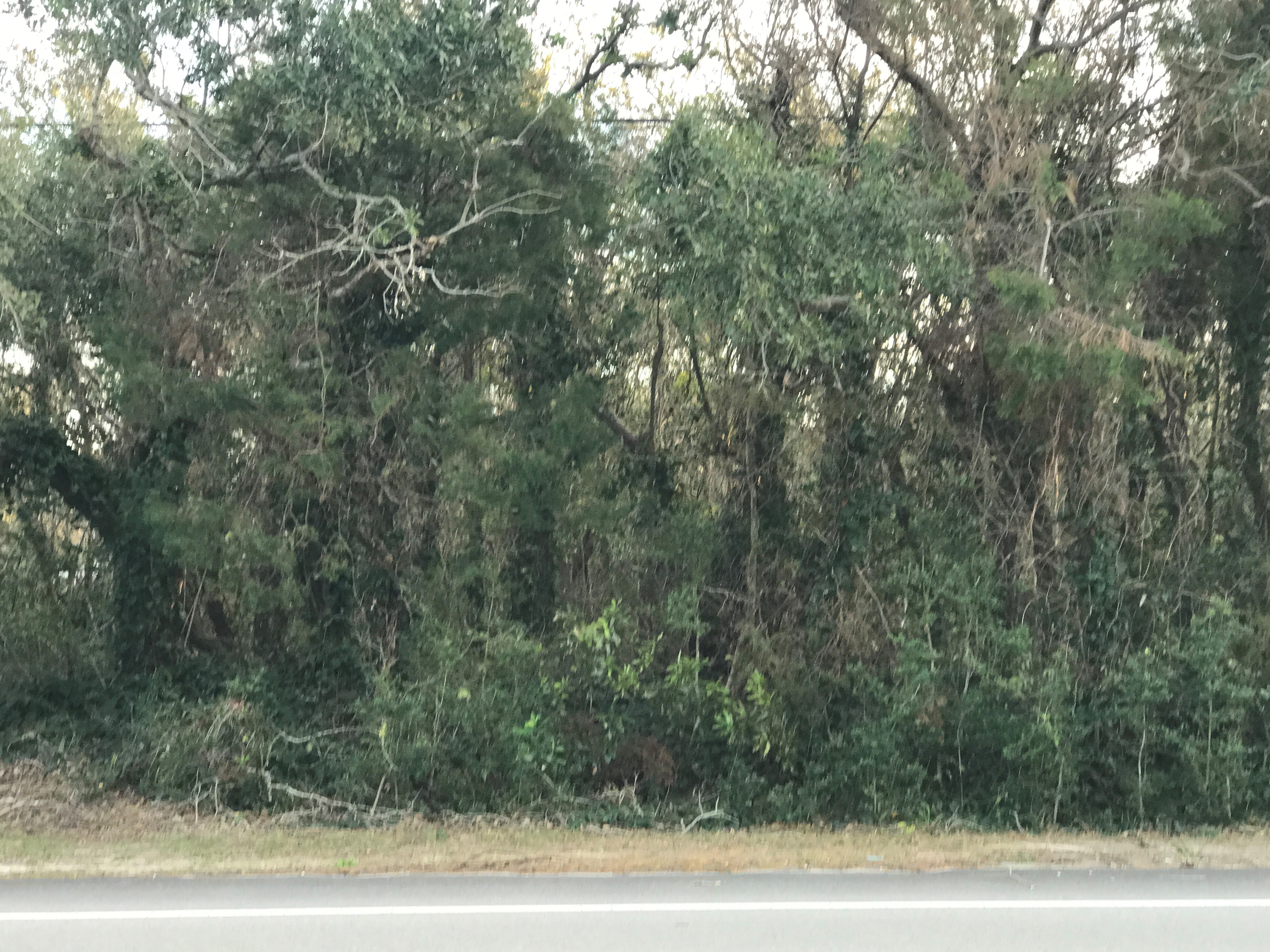 Land kaufen in 139 Salter Path Rd., Pine Knoll Shores, NC ,28512
