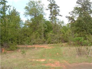 Land kaufen in 0 66.5 Acres Hwy 190 West, Jasper, Texas ,75951